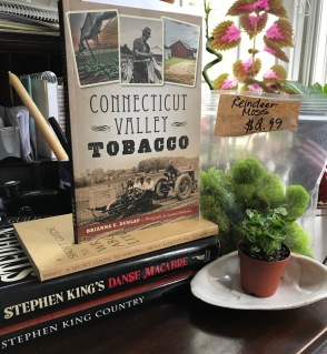 Book and Plant Haul from the Book Club Bookstore, South Windsor, CT (WildmooBooks.com)