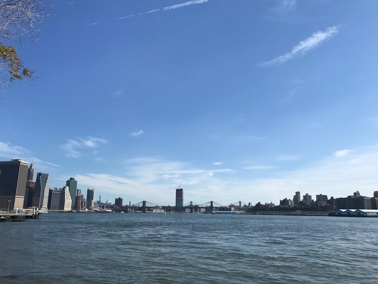 Brooklyn Bridge from Governors Island (WildmooBooks.com)