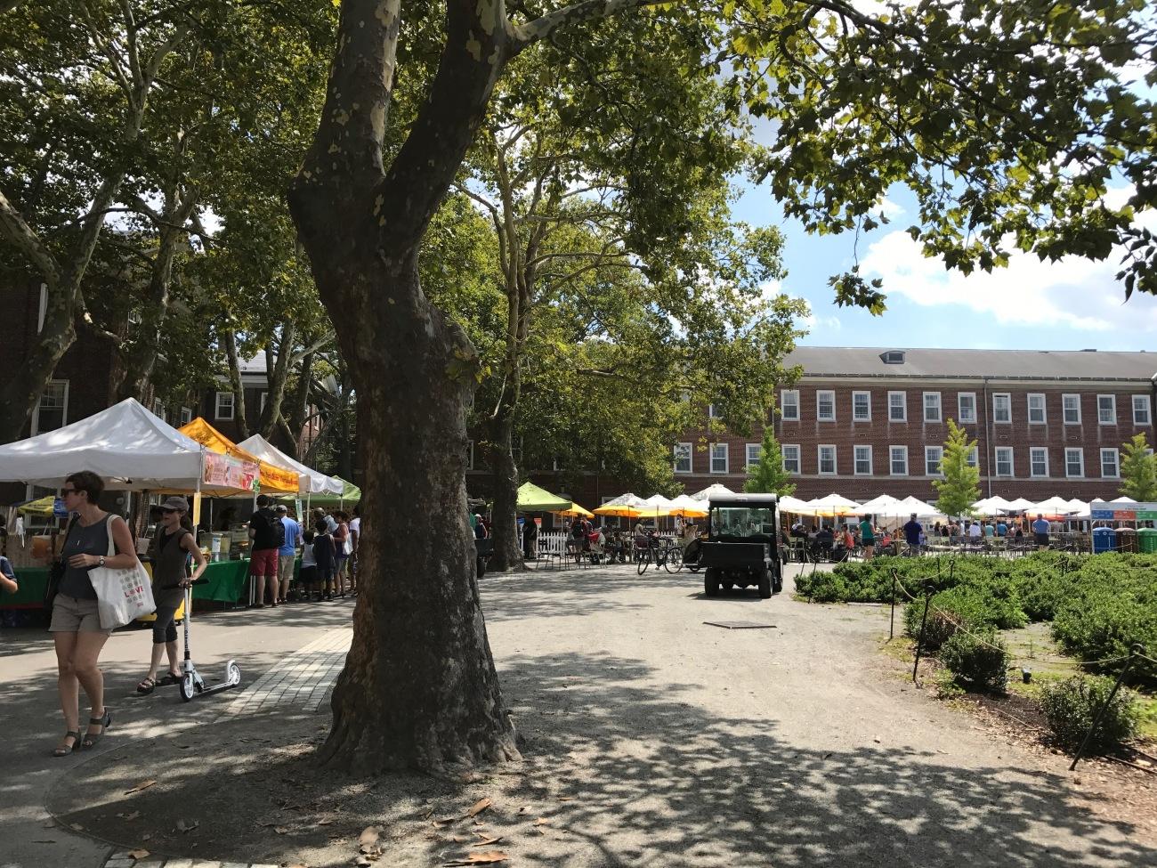 Food Vendors on Governors Island (WildmooBooks.com)